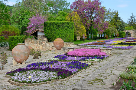 balchik: Flowers in a botanical garden