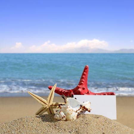 Seashells and starfish with blank card on sand beach photo