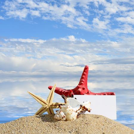 Beach background.Seashells and starfish with blank card on sand beach photo