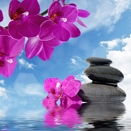 water stone: Zen massage stones and orchid flowers reflected in water