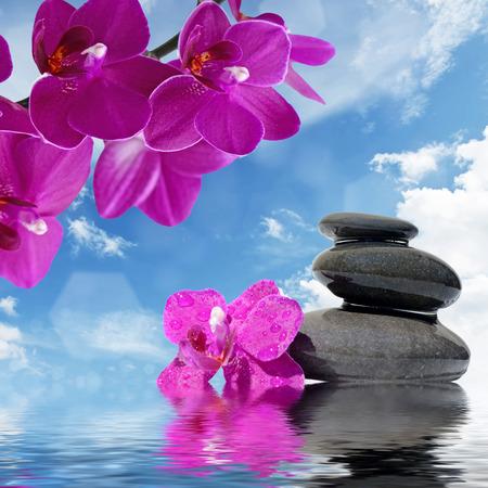 orchidee: Zen massaggio pietre e fiori di orchidea riflette in acqua