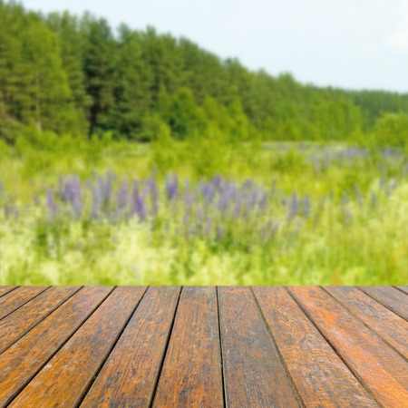 medow: Empty wooden table. In the background is blurred green meadow Stock Photo