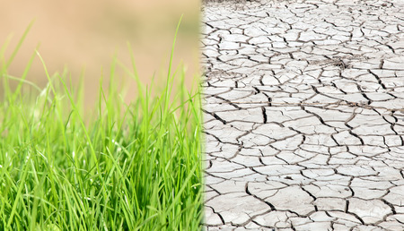 global warming: Dry land and fertile soil.Concept of climate change,seasonality,drought and crop
