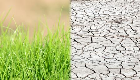calentamiento global: Tierra seca y soil.Concept f�rtil del cambio clim�tico, la estacionalidad, la sequ�a y la cosecha
