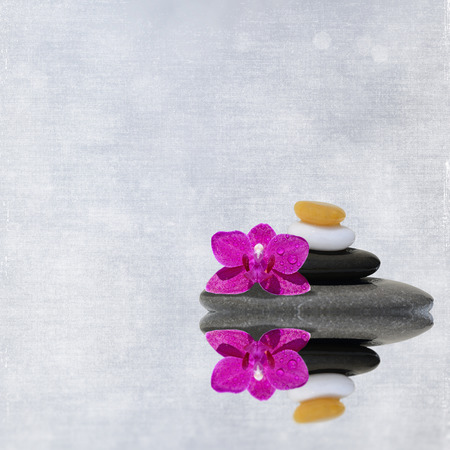 spa flower: Spa stones treatment and orchid flower, zen like concepts
