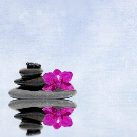 zen like: Spa stones treatment and orchid flower, zen like concepts