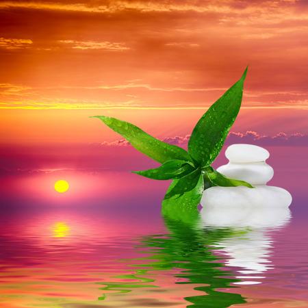 zen attitude: Pierres zen de massage et de bambou reflète dans l'eau, zen comme concepts