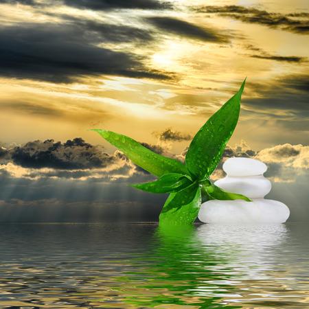 zen like: Zen massage stones and bamboo reflected in water,zen like concepts