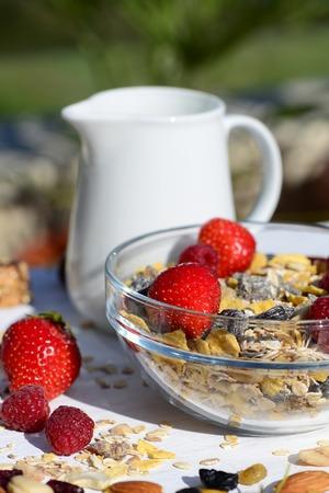 breakfast garden: A delicious and healthy breakfast in the garden of muesli with milk, nuts, berries