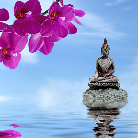 black stones: Zen or Feng-Shui background-Zen stone,orchid flowers and Buddha reflected in water Stock Photo
