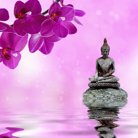 Zen or Feng-Shui background-Zen stone,orchid flowers and Buddha reflected in water Stock Photo