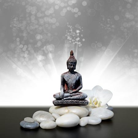 ZHWL6688 Estatua de Buda Decorativa de Piedra ubicada en el Jard/ín Zen con Flores La Alfombrilla se Puede Lavar a m/áquina ba/ño Aseo Cuarto de ba/ño Cocina Dormitorio Alfombra Almohadilla Impermeable