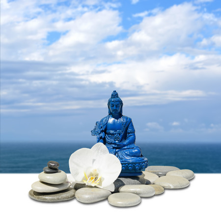 Feng-Shui background-Blue Medicine Buddha Bhaisajyaguru,zen stone,white orchid flowers, sea and sky