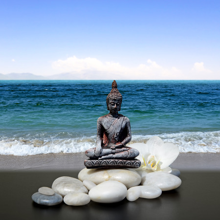 blue orchid: Buddha,zen stone,white orchid flowers, sea and sky
