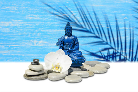 blue orchid: Zen or Feng-Shui background-Blue Medicine Buddha Bhaisajyaguru,zen stone,white orchid flowers.In the background is blurred wooden wall with palm shadow silhouette