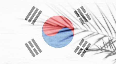 South Korea flag and shadow of palm branch on white wooden surface