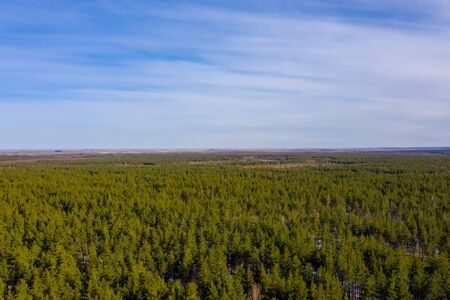 Spring landscape with forest and blue sky. Aerial drone shot Standard-Bild - 128843361