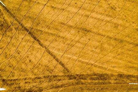 Young grass on the agricultural field, after the snow melt. On the field visible traces of transport. Abstract aerial view background Standard-Bild - 128843365