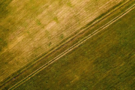 Young grass on the agricultural field, after the snow melt. On the field visible traces of transport. Abstract aerial view background