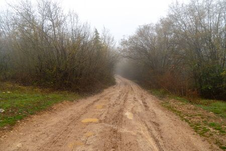 Fog and rain in the spring forest. Country road covered in mud and clay.