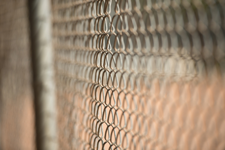 enclose: old chain link fence