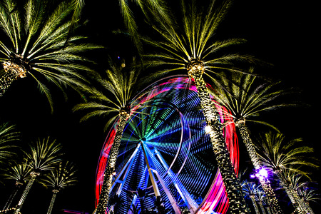 ferris wheel spinning at night with palm trees