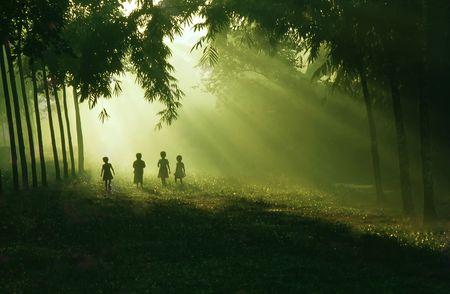 ni�os caminando: Los ni�os caminando y tocando en brillante ma�ana.  Foto de archivo