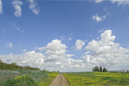 The road through the meadow under blue cloudy sky.
