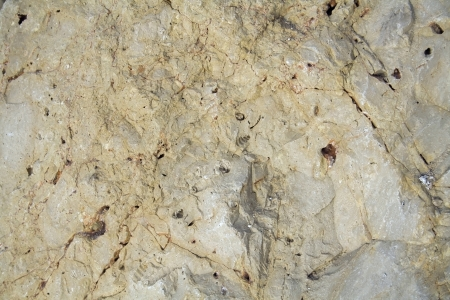 Texture - light yellow sandstone, structure of stone