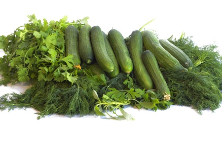Cucumbers, dill leaves and parsley on the white background. Stock Photo