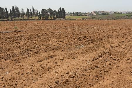 plowed field: Spring plowed field ready to take the grain  Stock Photo