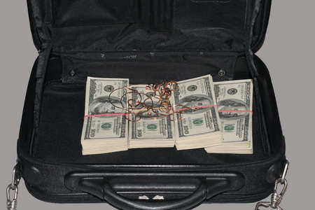 The bag with 40 thousands dollars and jewelry photo