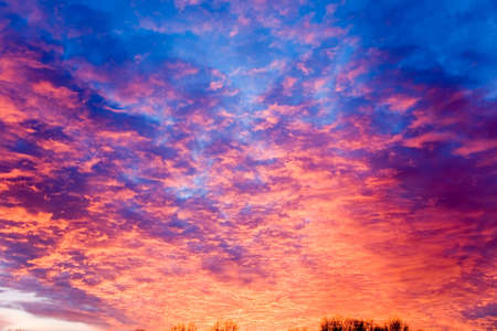incarnadine: the threatening flame-colored sunset over silhouettes of trees Stock Photo