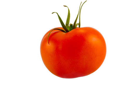 the single red tomato isolated on white background