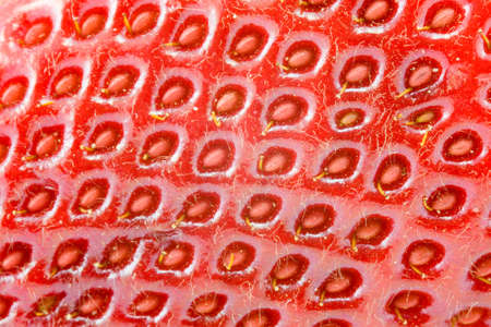 the abstract background from red strawberry macro photo