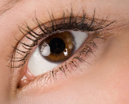 eyes wide: the human wide open brown eye macro Stock Photo