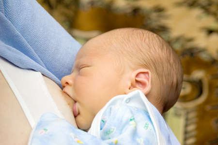 the breast feeding of newborn Stock Photo - 1720906
