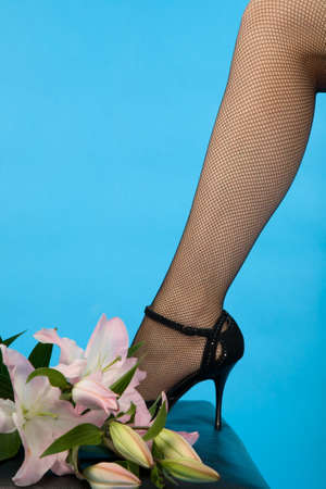 female leg in high heel shoe and pink lily on blue background photo