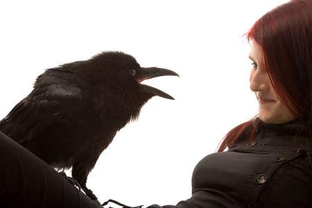 harridan: joven mujer con cuervo negro sobre fondo blanco  Foto de archivo