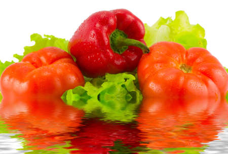the still life from tomatoes, pepper and sald in water photo