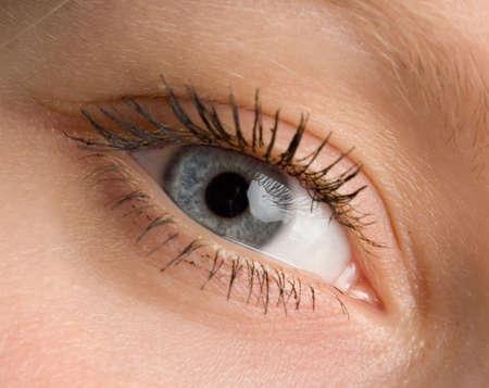 the human wide open blue eye macro photo