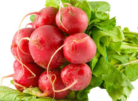 bundle of red radish isolated on white background photo