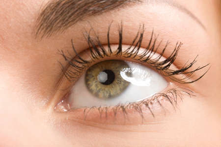 female wide open brown eye with long eyelashes macro Stock Photo - 3898259
