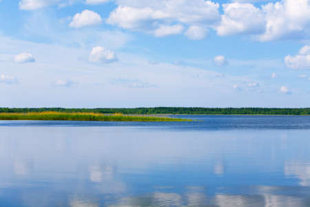 lake with cane, sky and clouds, summer landscape Stock Photo - 4350199
