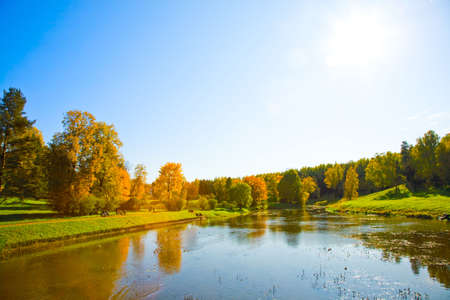 yeloow: the autumn landscape witn yeloow trees and small pond Stock Photo