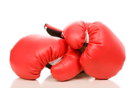 combative: closeup photo of the boxing gloves with reflection on a white background