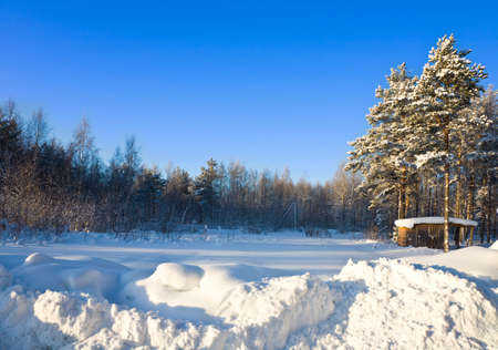 The winter sunny landscape, frozen and snowy Stock Photo - 6389130