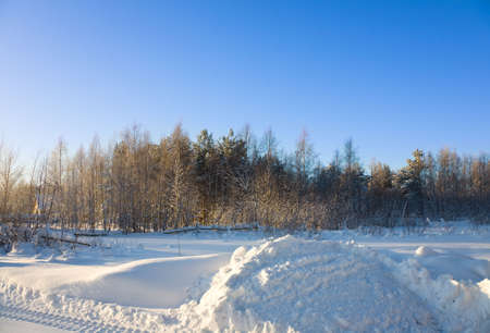 The winter landscape in the frozen forest photo