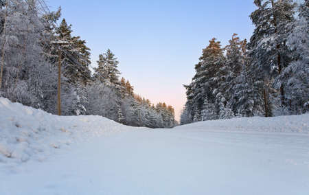The winter sunny landscape, frozen and snowy Stock Photo - 6389131