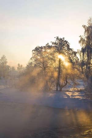 brich: The winter sunrise under a river, landscape